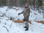 Полицейские Усть-Илимска выявили и пресекли незаконную порубку леса
